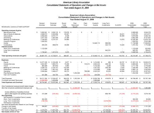 2009 consolidated financial statement preview