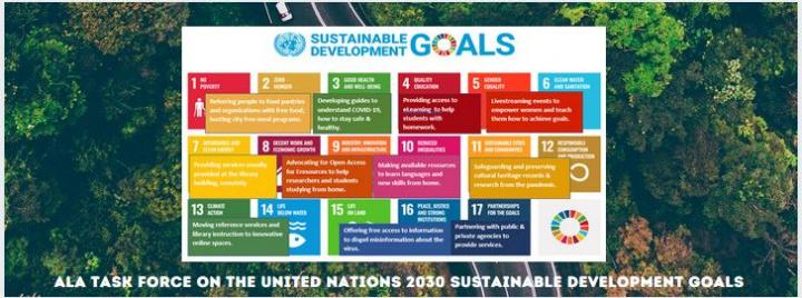 SDG Task Force