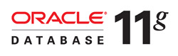 oracle database 11 logo