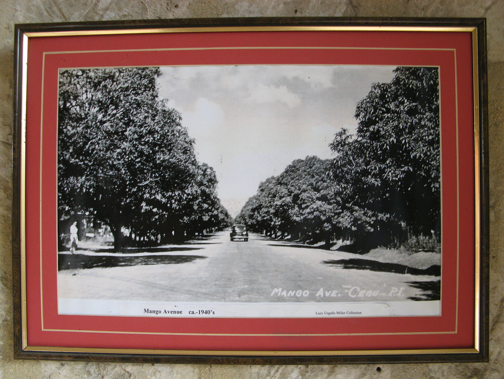 Framing a Photo and a Paper Frame | Association for Library ...