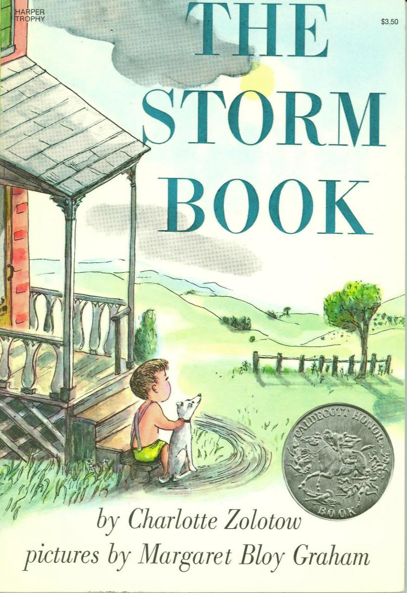 The Storm Book - book cover image