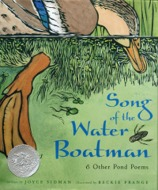 book cover image - song of the water boatman