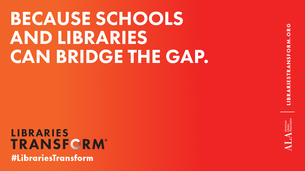 Because schools and libraries can bridge the gap