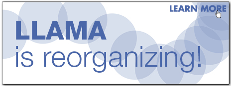 llama reorg homepage highllight