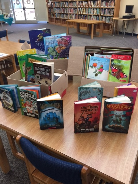 Picture books donated to elementary school.