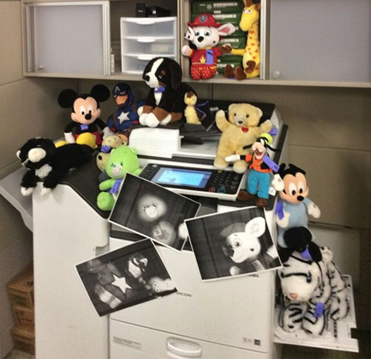Stuffed animals have some fun with the copier during Library Bedtime Adventure at Chinn Park Regional branch of the Prince William (Va.) Public Library.