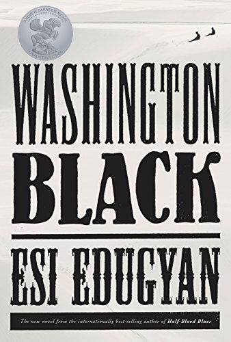 Book cover:Washington Black
