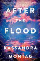 After the Flood book cover image
