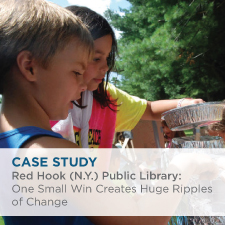 Case Study: Red Hook (NY) Public Library: One Small Win Creates Huge Ripples of Change