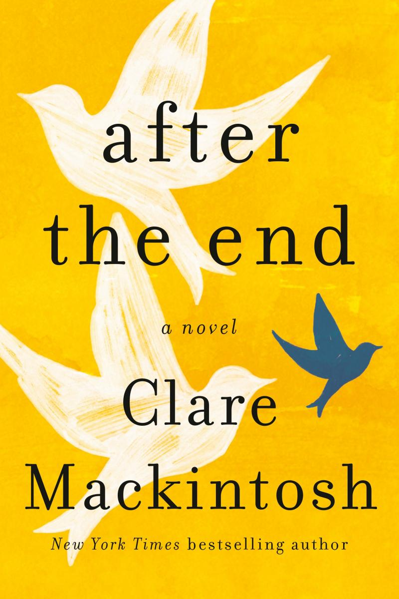 Book cover of After the End by Clare Mackintosh